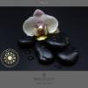 Design 12 – Applicazione submark Marta Doe Design con mandala oro